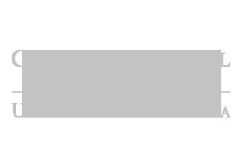 DM-Homepage-Logos-Carlson.png