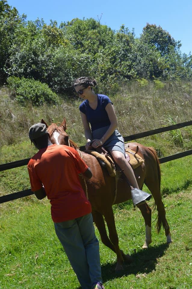 paige horse.jpg