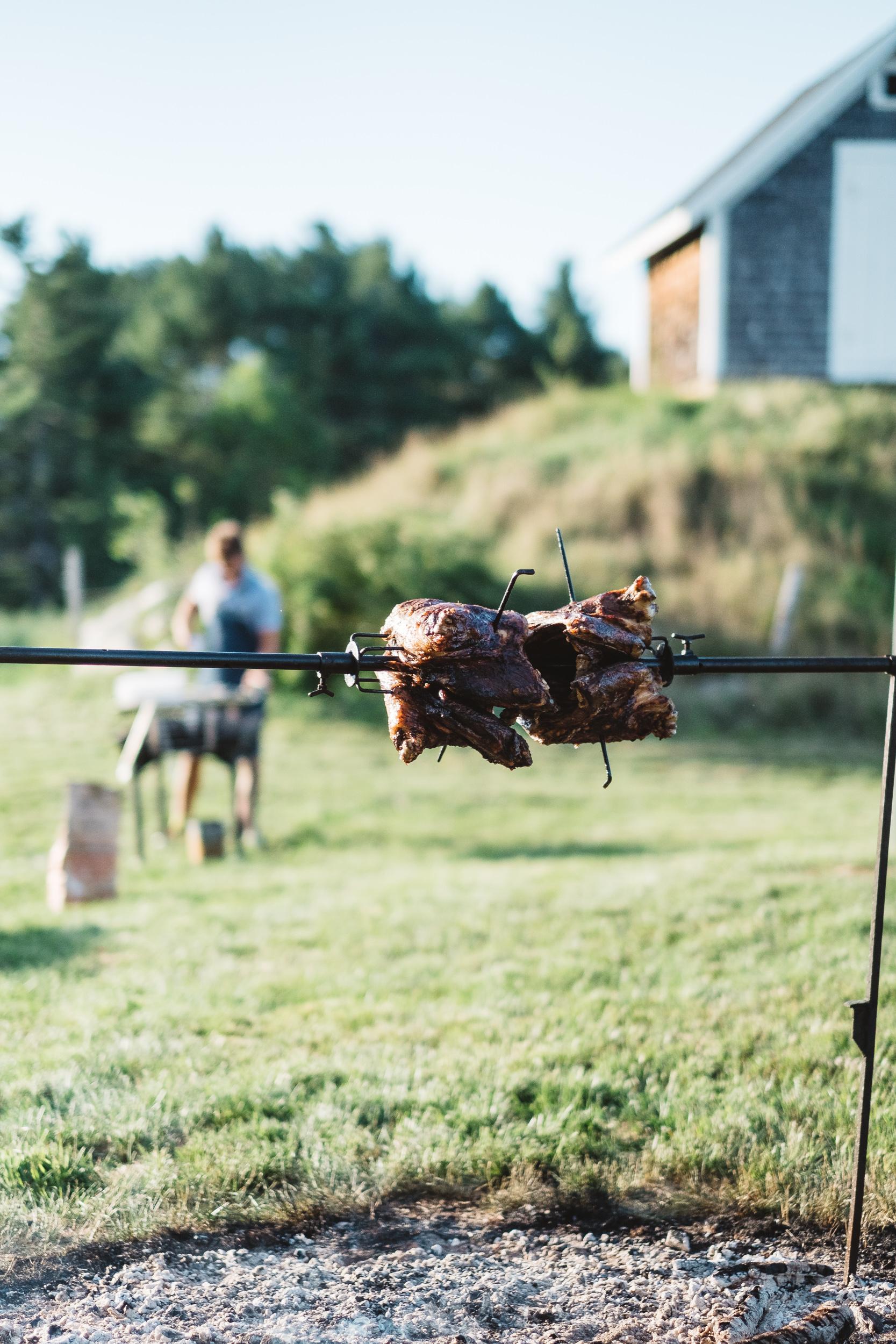 Farm Dinner (1 of 1)-3.jpg