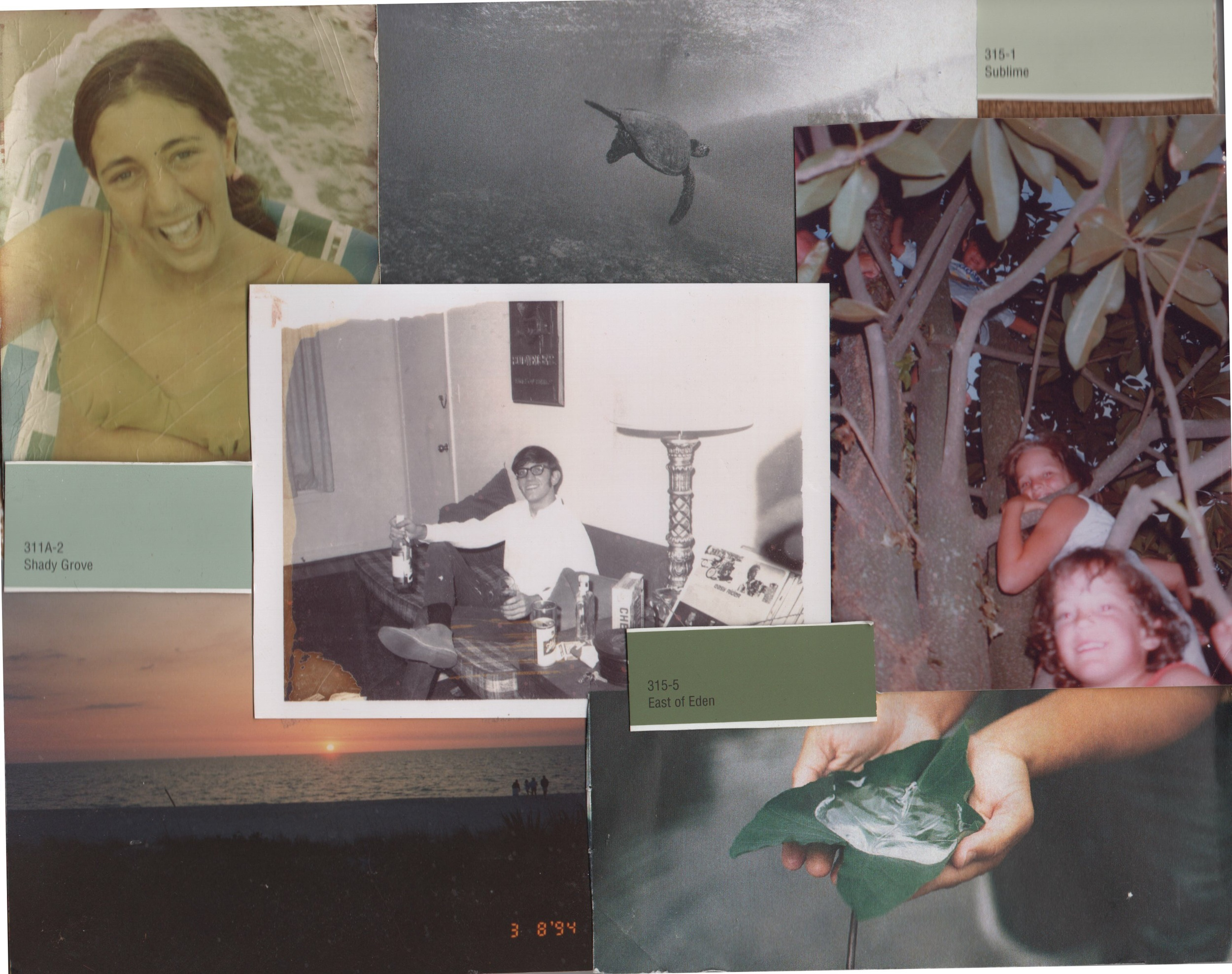 family collage, 2005