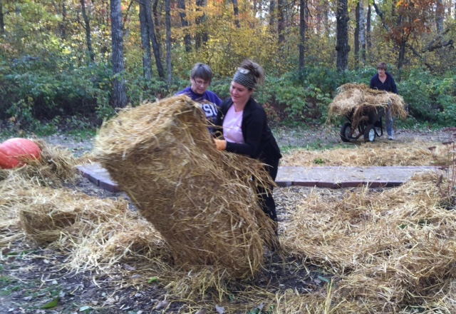 Linda F, Ericka P, and Elaine M working on laying down straw in our Pathway of Hope Garden