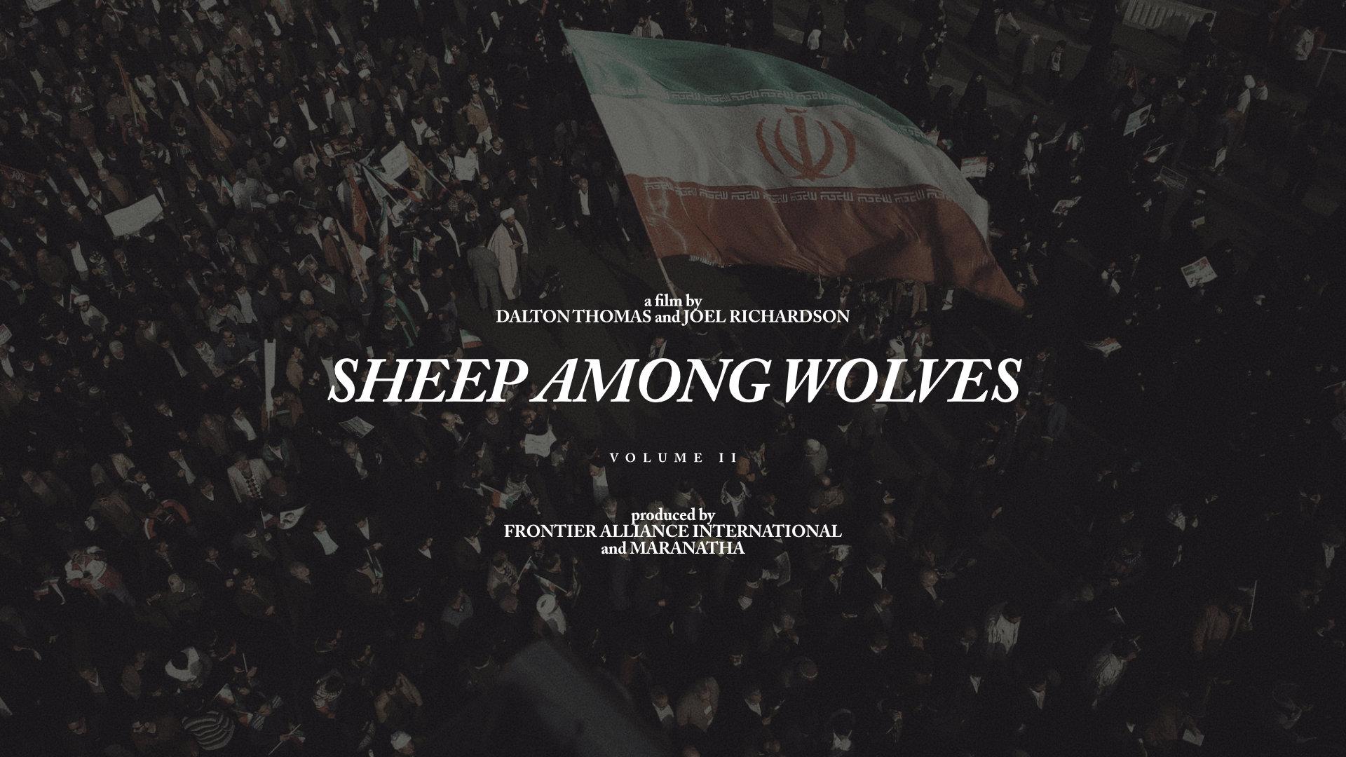 Sheep 2a.jpg
