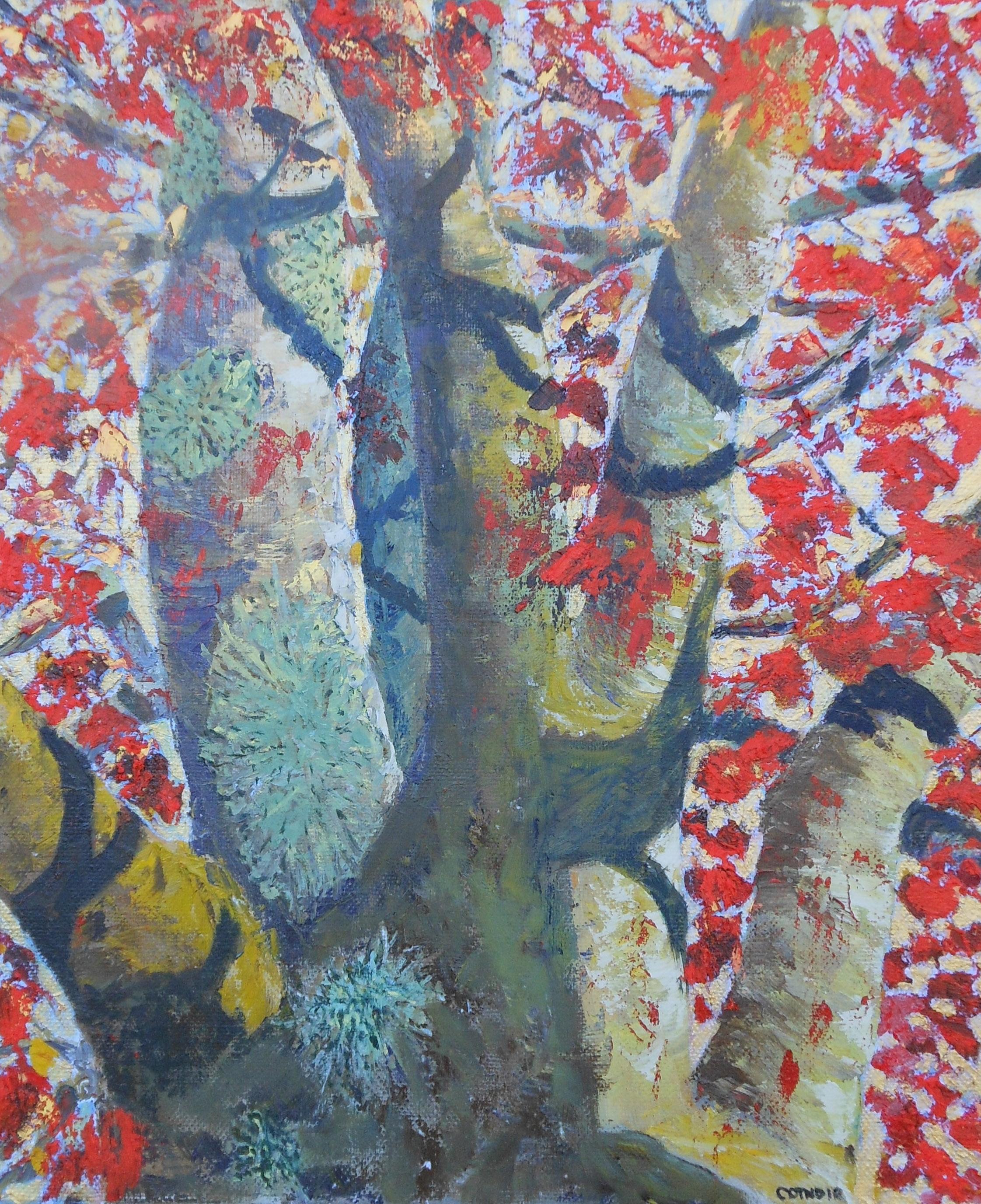 Tree with Lichen