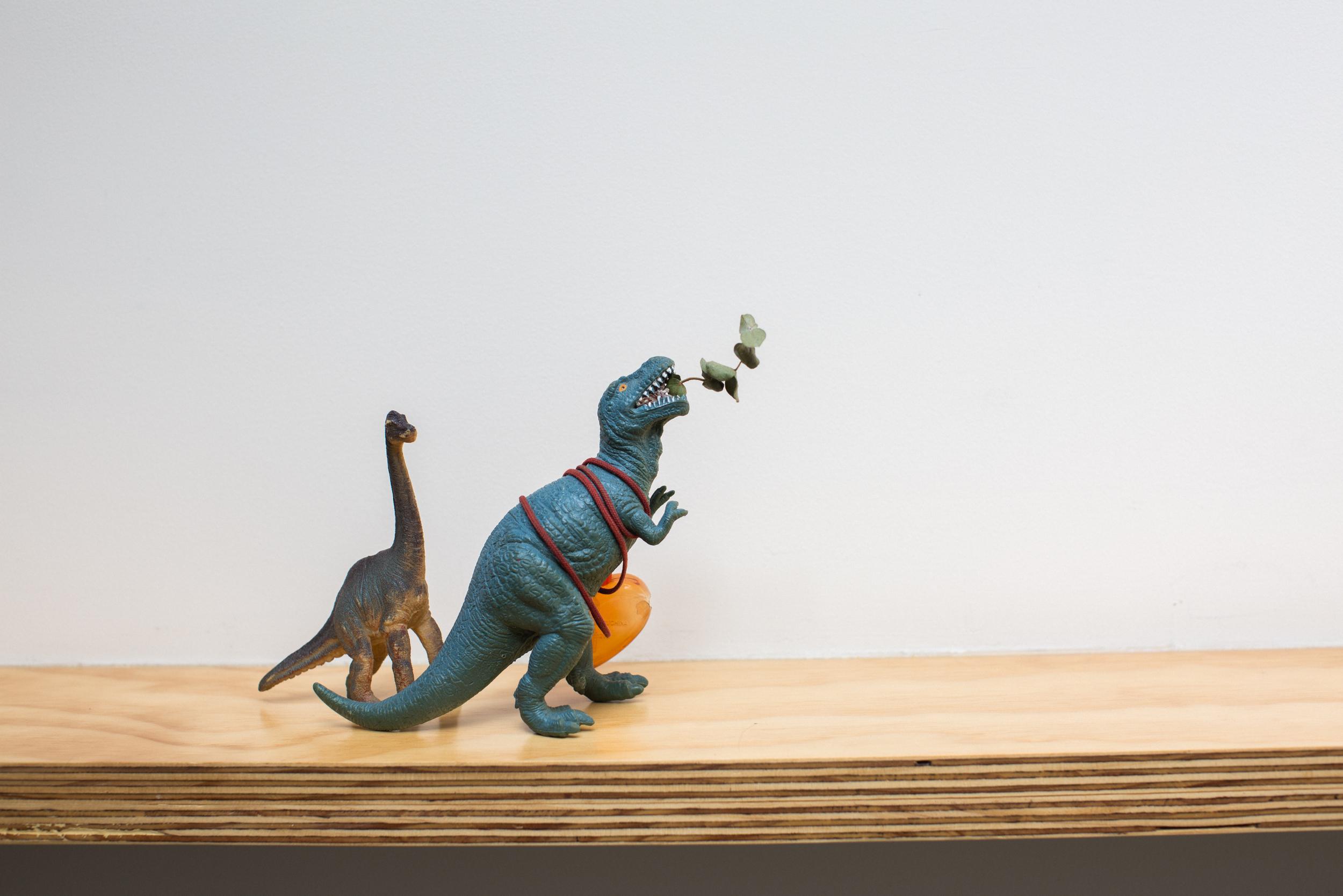 20150219_F_DinosaurCoffee_102.jpg