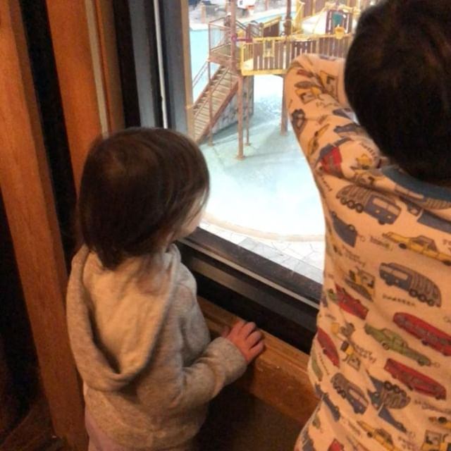 "Great Wolf Lodge is Vegas for kids. It's not a part-time, ""where's the kids club?"" family weekend. It's full-on, go big, get it done, have a blast and pass the eff out. My story on Great Wolf & the brand's growth trajectory for @forbes. Link in bio."