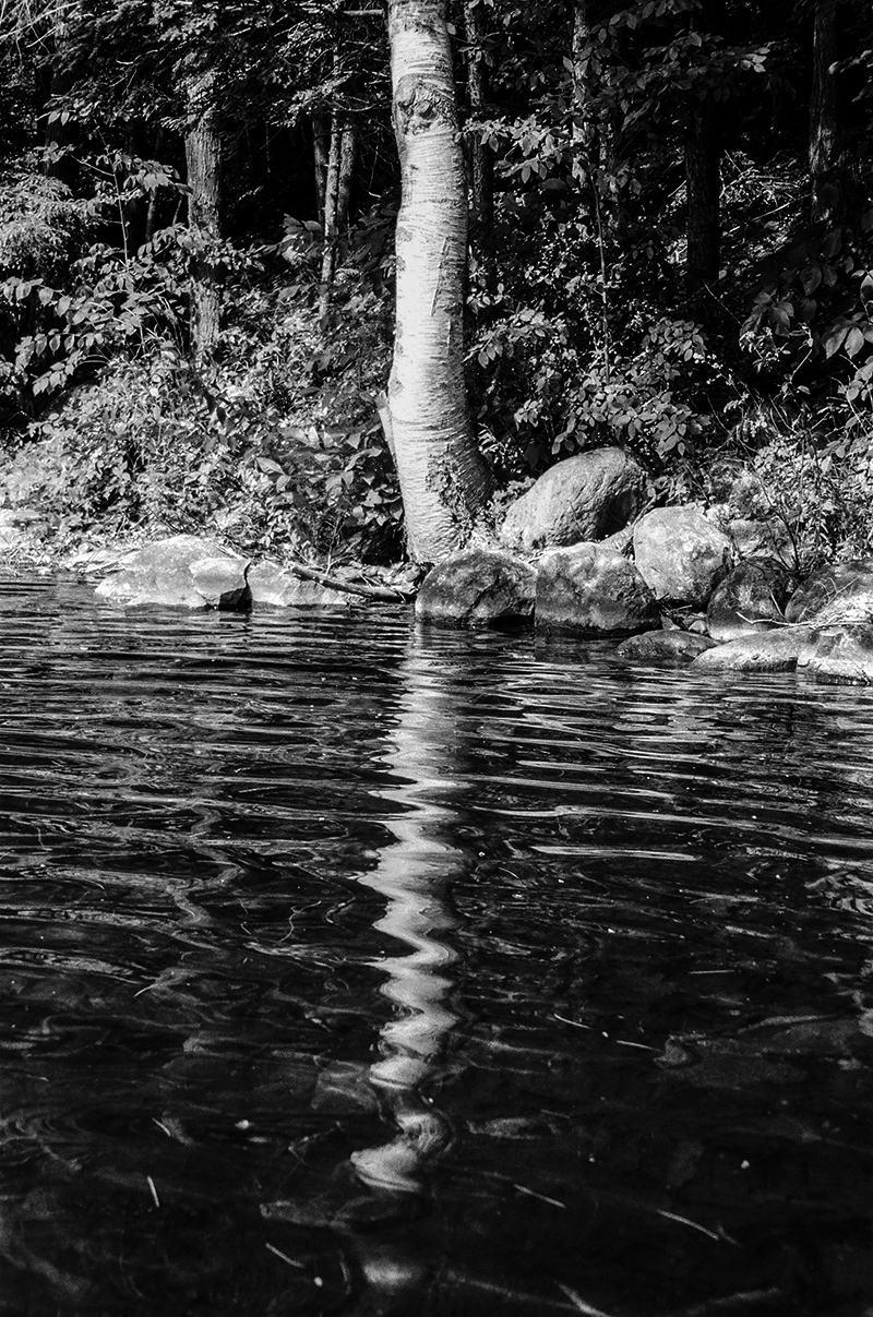 RIPPLE EFFECT - EMERALD LAKE, VERMONT - 2014