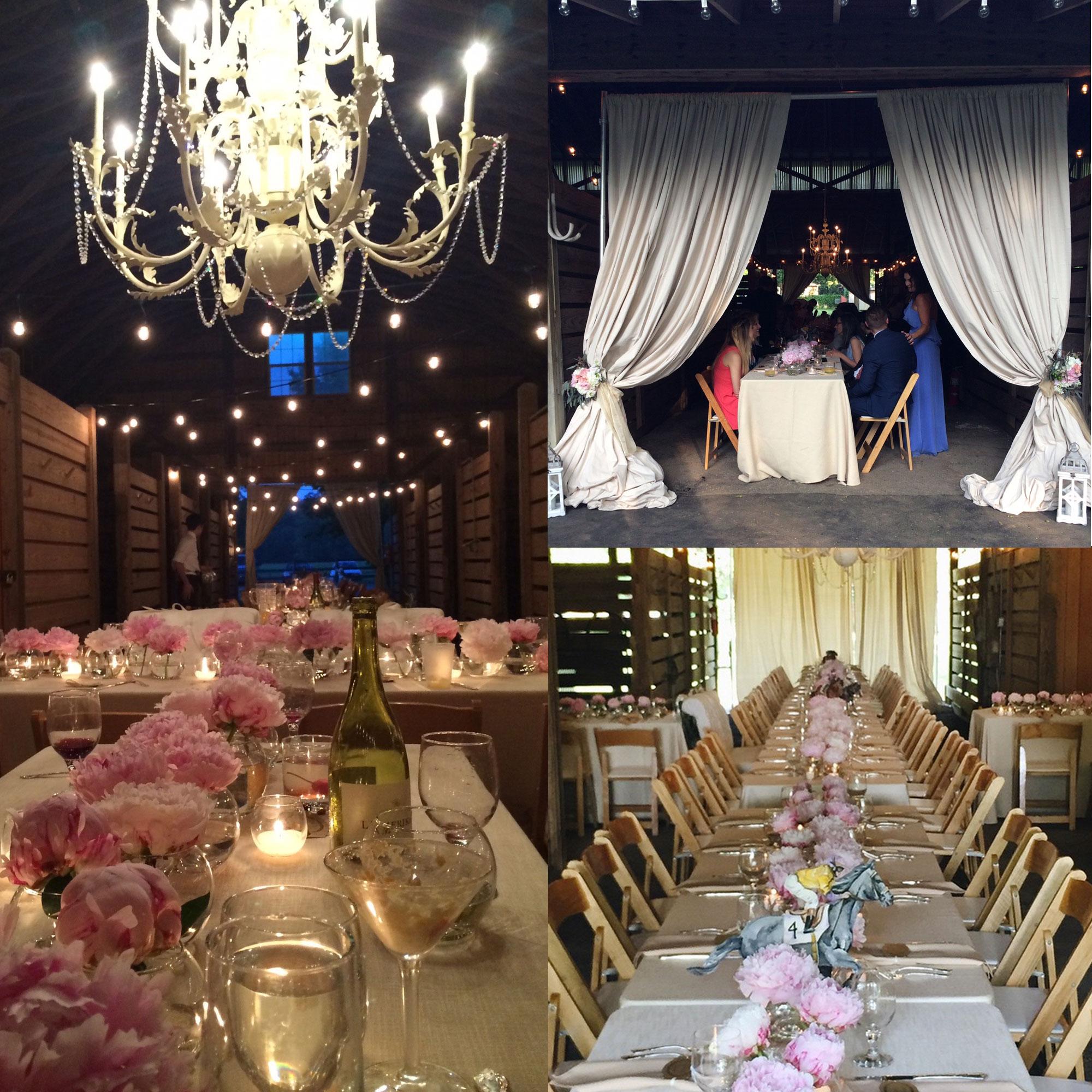 Polo Barns at Saxony, Farm Wedding, Barn Reception, Farm Tables, Peonies, Chandelier in the Barn!