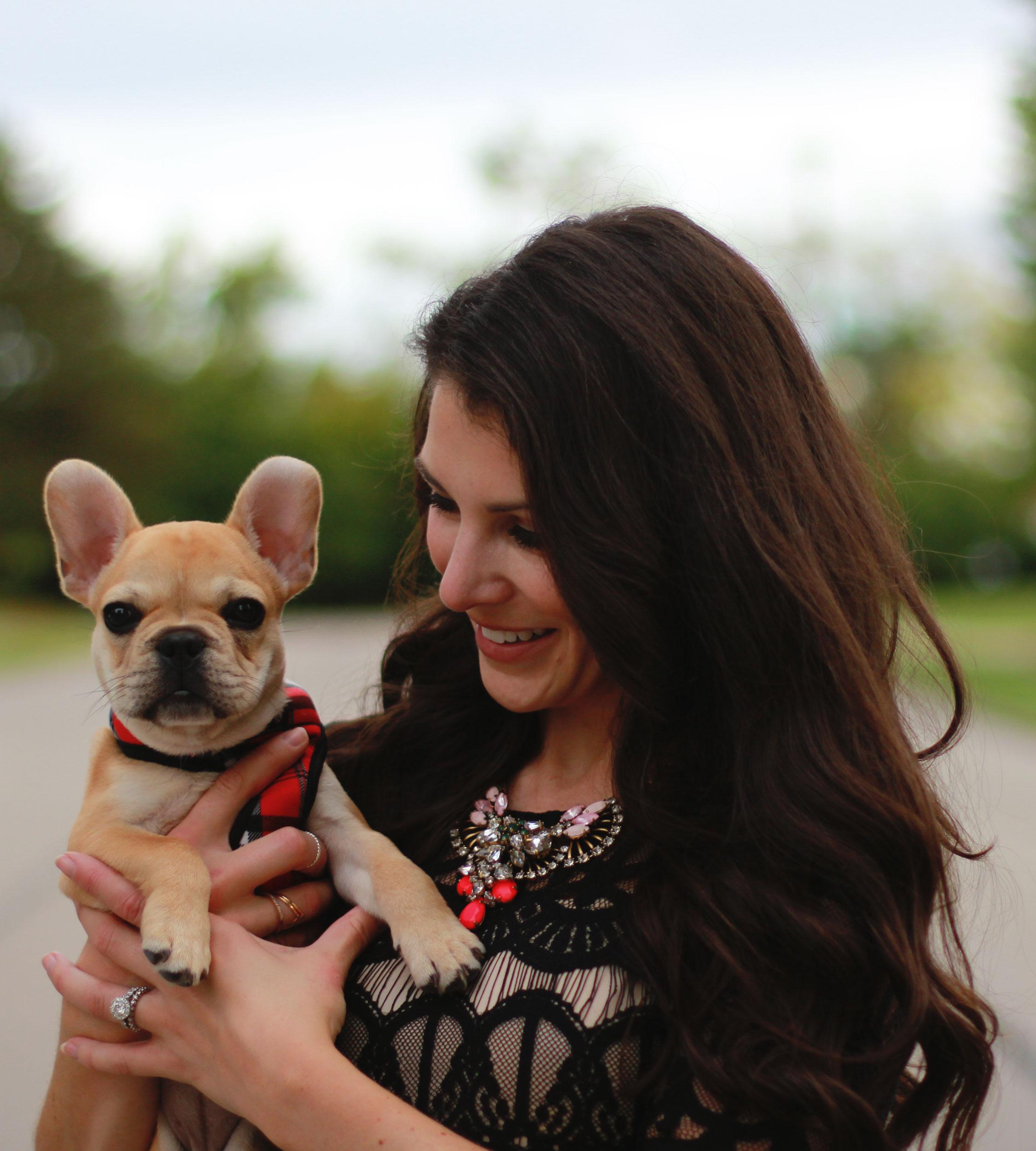 Fall Fashion, JOA Lace Body-Con Dress, Wedding Guest Attire, Statement Necklace, Midi Dress, Jessica Simpson Claudette Pumps, French Bulldog Puppy