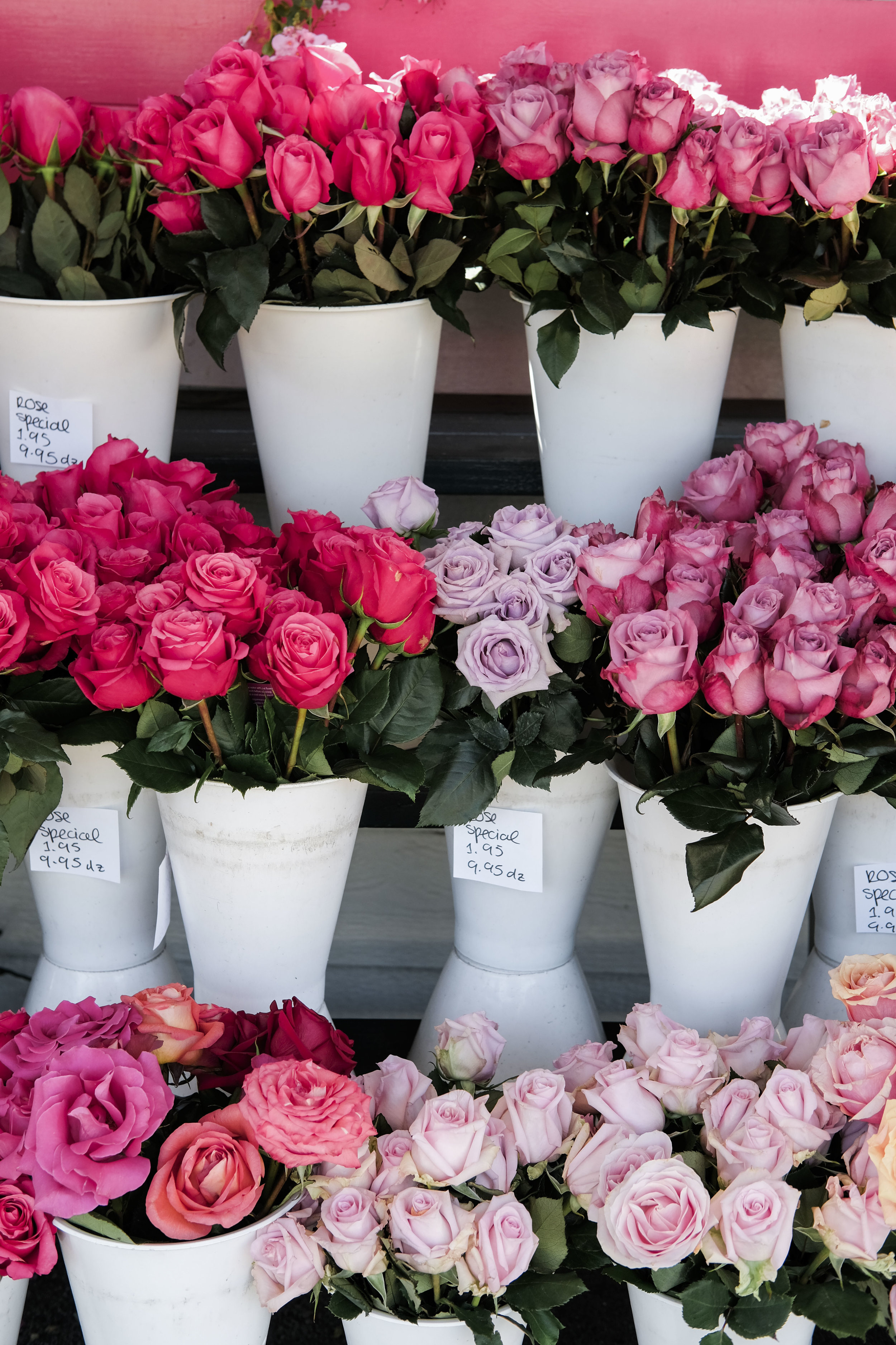 Fun things to do in Laguna Beach.  Browne's Flower Stand in Dana Point.
