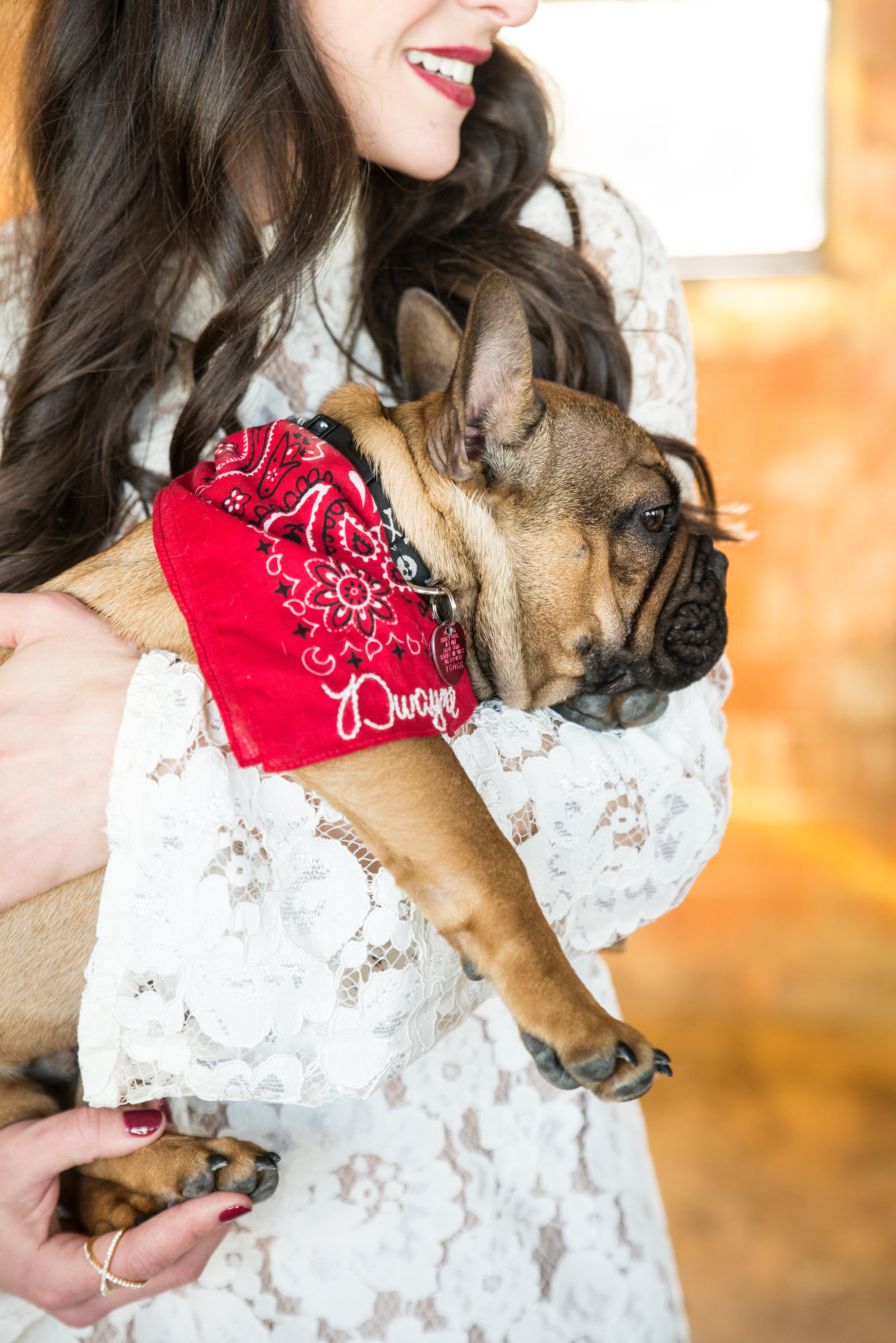 Fall baby shower.  French bulldog puppy.  Embroidered bandana for dogs.jpg