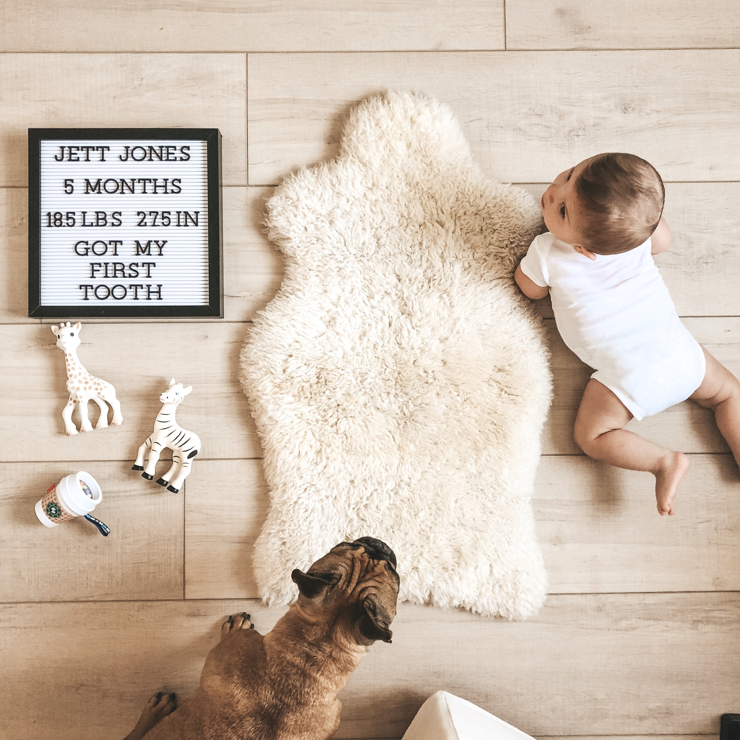 Monthly baby photos.