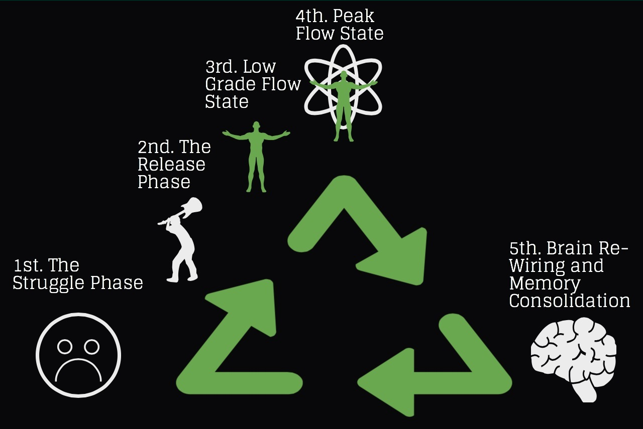 The Phases of  a FLOW state.