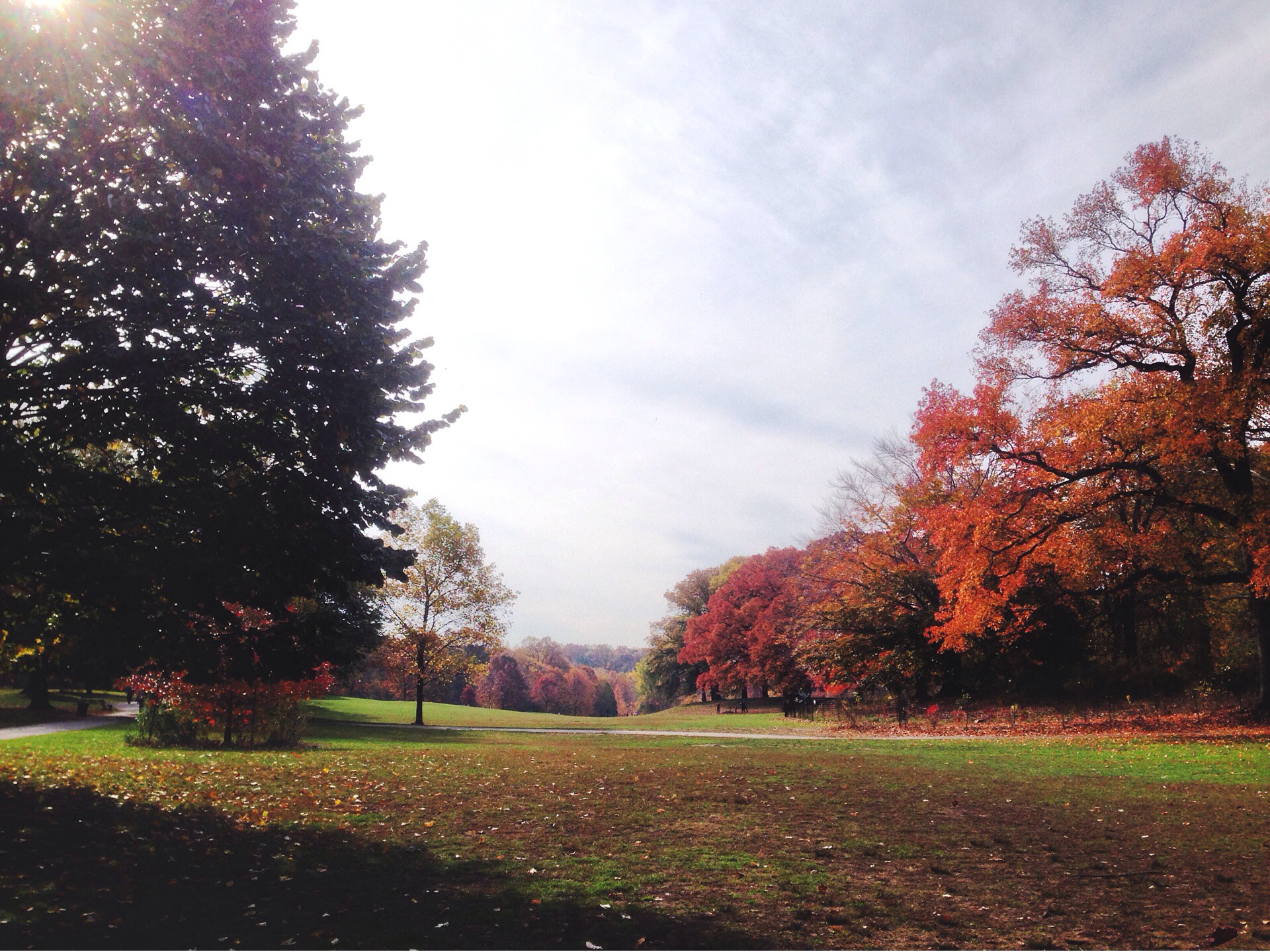 Prospect Park Fall of 2014 - Photo by: Lauren L Caorn