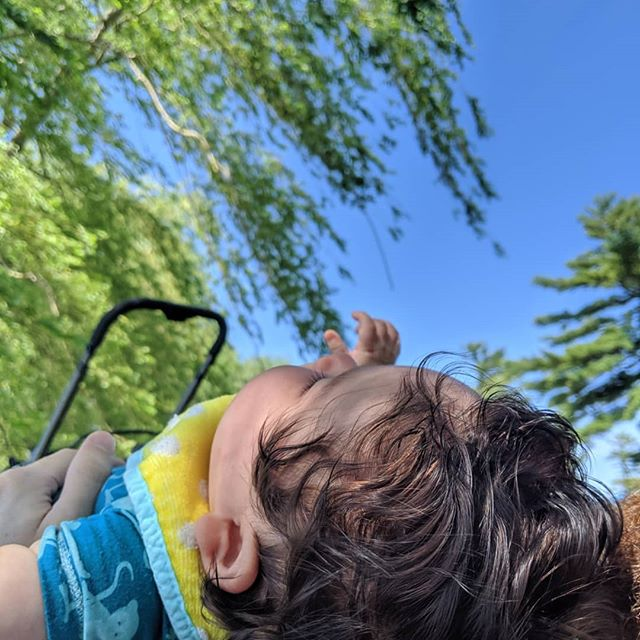 Spent some time on the river yesterday watching the geese graze and a flock of ducklings huddle around its mama (Oy it was so cute😆). Jakey was captivated by the weeping willow rustling in the warm breeze.