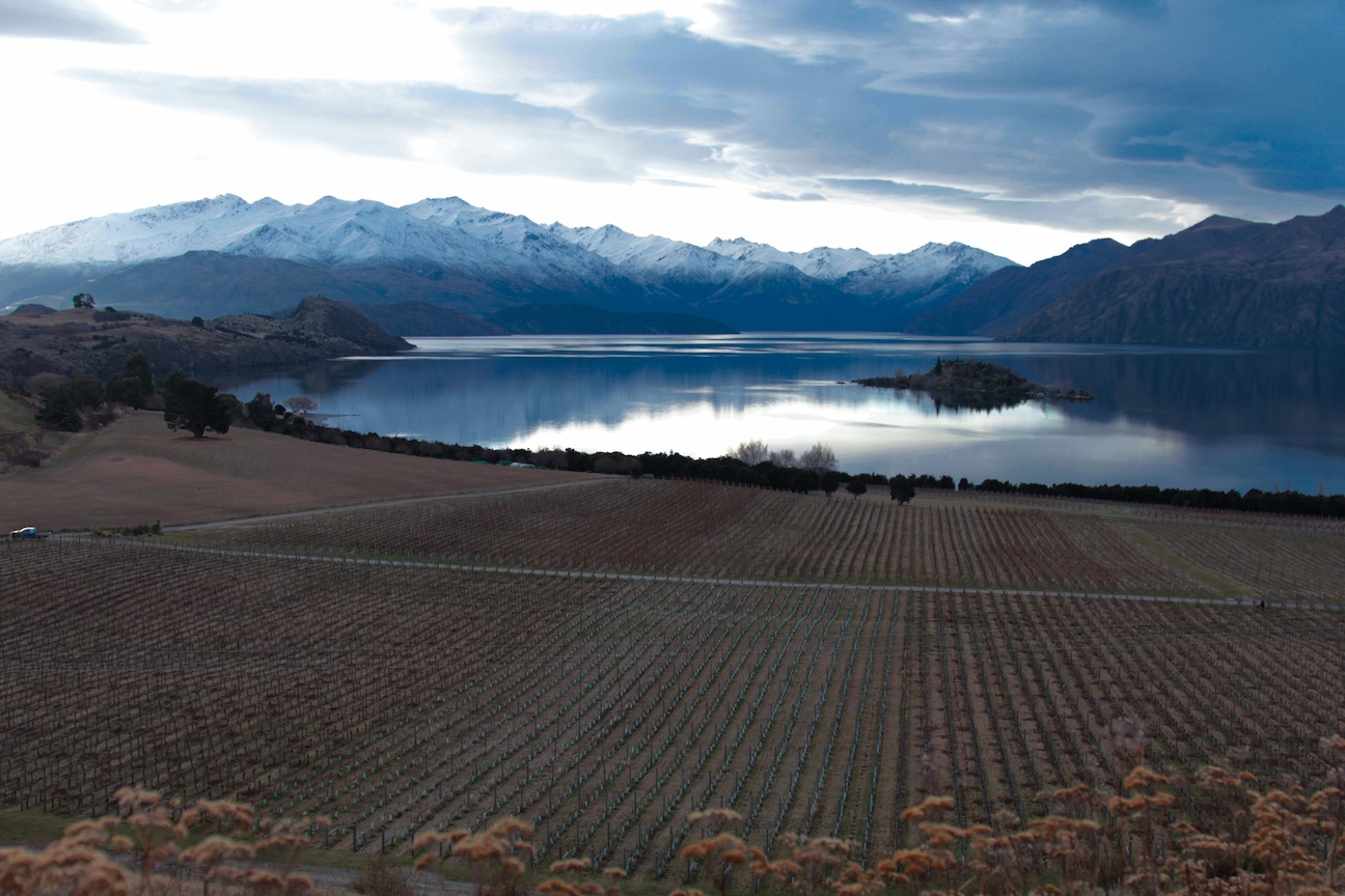 CLIENT: BERT (Personal) JOB: Rippon Vineyard, New Zealand