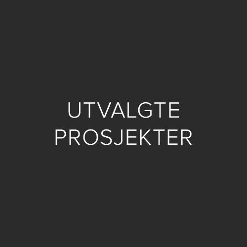 UTVALGTE PROSJEKTER.jpg
