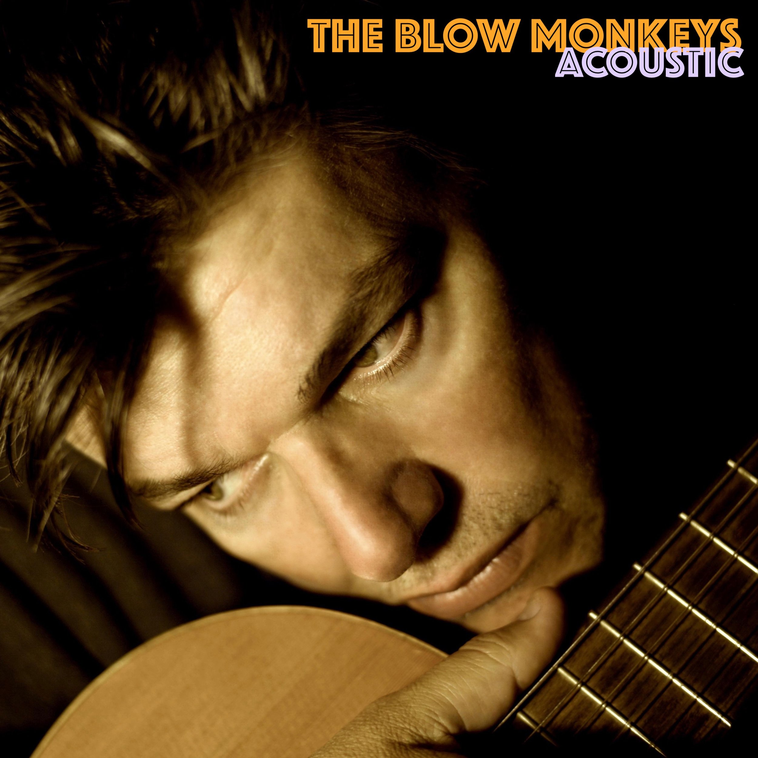 BM's Acoustic.jpg