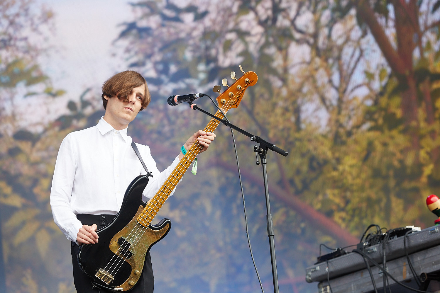 20th June 2015. The Horrors Barclaycard British Summertime in London's Hyde Park.