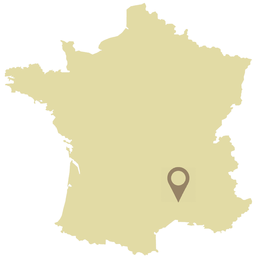 france-vector-map-flanerie_Y flat.png