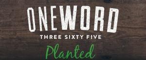 One Word 2016 PLANTED(1).jpg