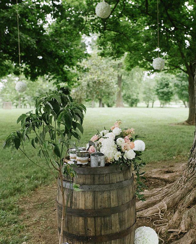 Sabrina + Jack had one of the most unique unity ceremonies I've ever gotten to be apart of, it made me wish Joseph and I had done something like this on our wedding day! They took soil from where Sabrina grew up + soil from where Jack grew up. Each bucket was separate and they blended the soils together, once the soils were blended they invited their moms to come up and water it. They planned to plant the tree in the backyard of their home.  I mean how sweet is that?! I love it! 🌿