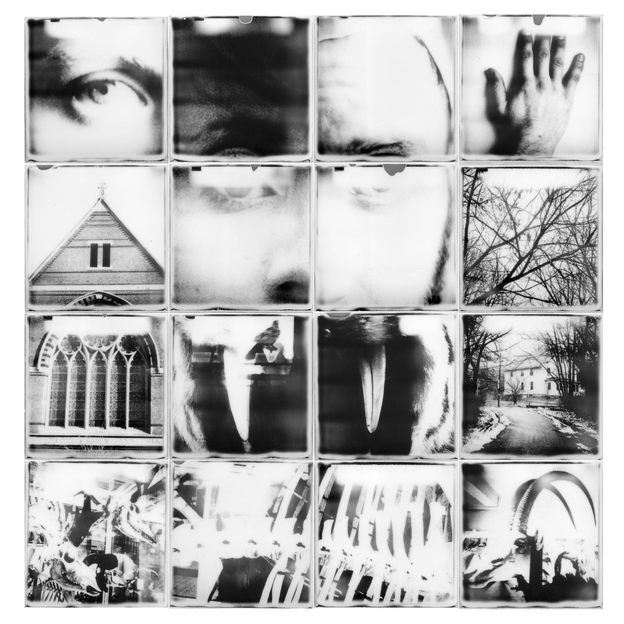 People-collage.jpg
