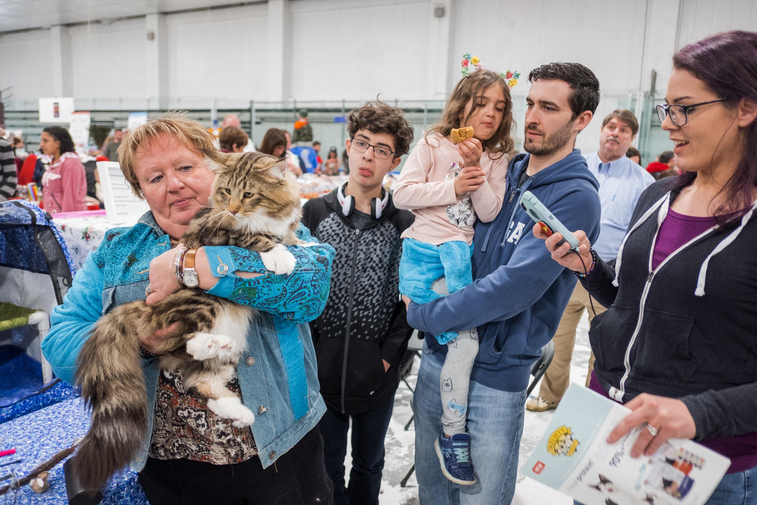 Cat Show-21.jpg
