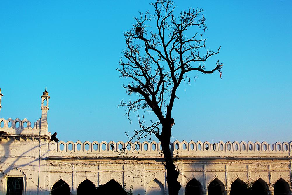 India_8618_sm.jpg