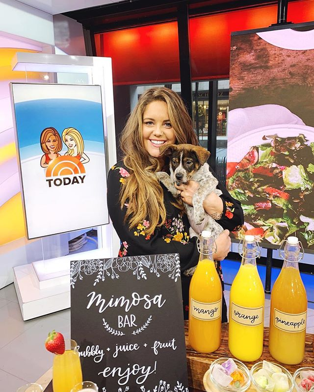 Friday I was on @todayshow surrounded by puppies 🐶, the fab five @queereye team, and amazing @pinterest brunch foods! It was a memorable A-list filled day for sure, but what I'll remember most is scrambling in my hotel room to find a DIY solution for my completely see through dress debacle 🤦‍♀️😬 . . . It made me so thankful for my OG diy days on Knock It Off where we had to make things work with basically 0 money and limited resources. Knock it off basically gets the credit for not showing my lady parts off to millions of Americans last week 😂🙌🏻💯. . . Swipe through to watch my IG story and dress debacle and thanks to everyone for their ideas and encouragement. Also if you wondered ... I did try to tuck a hotel bath towel into my tights like a skirt... wouldn't recommend that option 🤔🤦‍♀️. . . Oh and you can watch the awesome @todayshow segment with all the delicious @pinterest inspired brunch ideas with the link in my bio. Easter brunch is coming! . . . #wardrobemalfunction #eastcoastcreative #todayshow #pinterest #ec2productions #tvlife #livetv #onairtalent #homeexpert #pinpicks #mypinterest #knockitofftv #fashion #diy #diyhack #fashiondiy #diyer