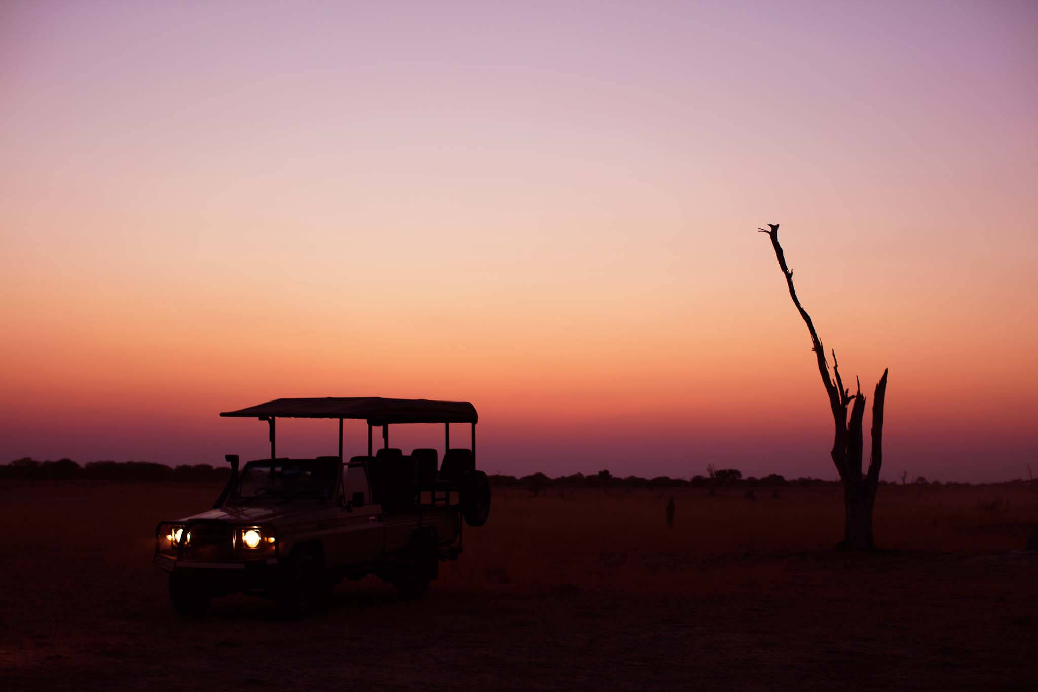 Safari Botswana Okavango Safaris