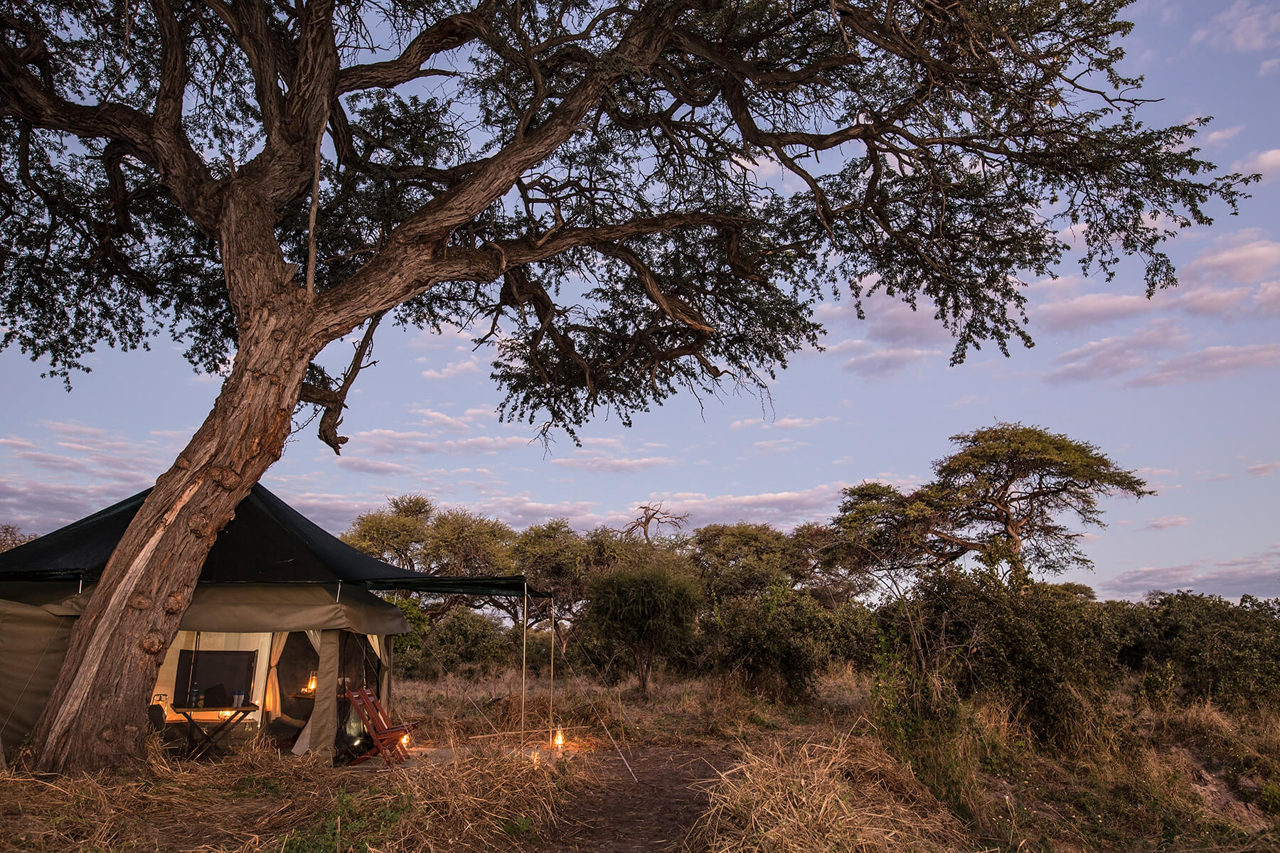 BarclayStennerSafaris Accommodation Tent 2 one.jpg