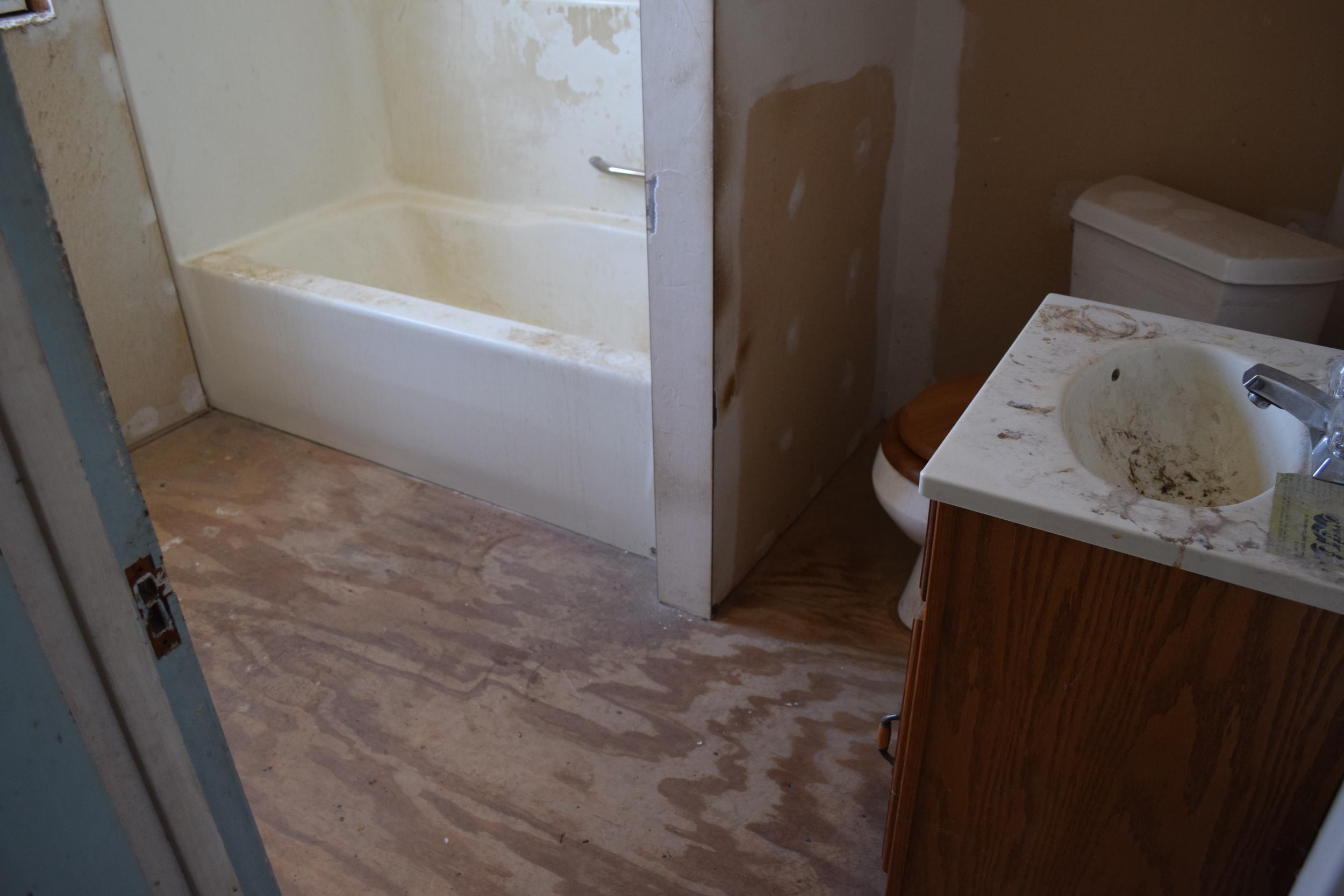 116 Benedict - Bathroom 1 Before.JPG