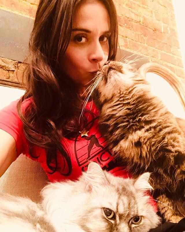 Strictly for my ninjas: My lover boys—Ayden and Praxis! #cats #ninjacats #catmom #loverboys #crazycatlady #newyorkcats #adoptedcatsnyc #rescuecats #kitty