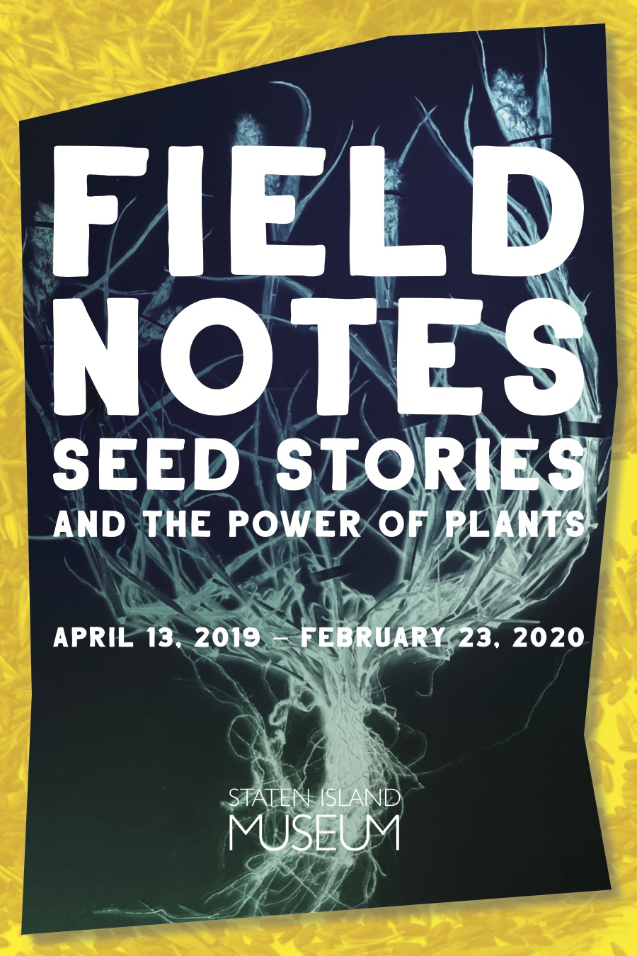 Field Notes - Seed Stories and the Power of Plants (dragged).jpg