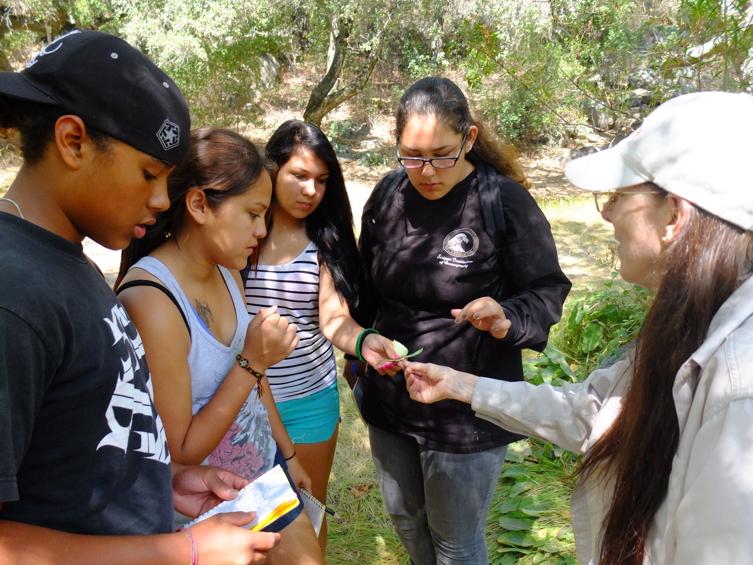 San Diego State Professor, Dr. norrie Robbins is a geologists and ethno-botonists, specializing in the plants of Southern California Coast. She has also studied with kumeyaay Elders Jane dumas, and often joins  ITY Guest presenter Richard Bugbee during our ethno-botony walks..