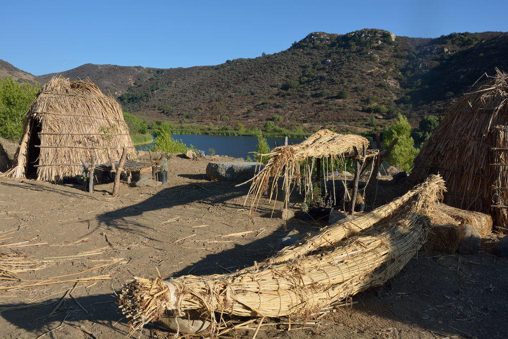 Example of traditional indigenous ways of life along the water's edge.Halasii e'ha topit at Sycuan Reservation. PHOto by Jill Richardson; Traditional Kumeyaay houses ('ewaa) and two tule boats. The one in the foreground is completed, and the one on the platform in the background still needs more work. August 12, 2013.