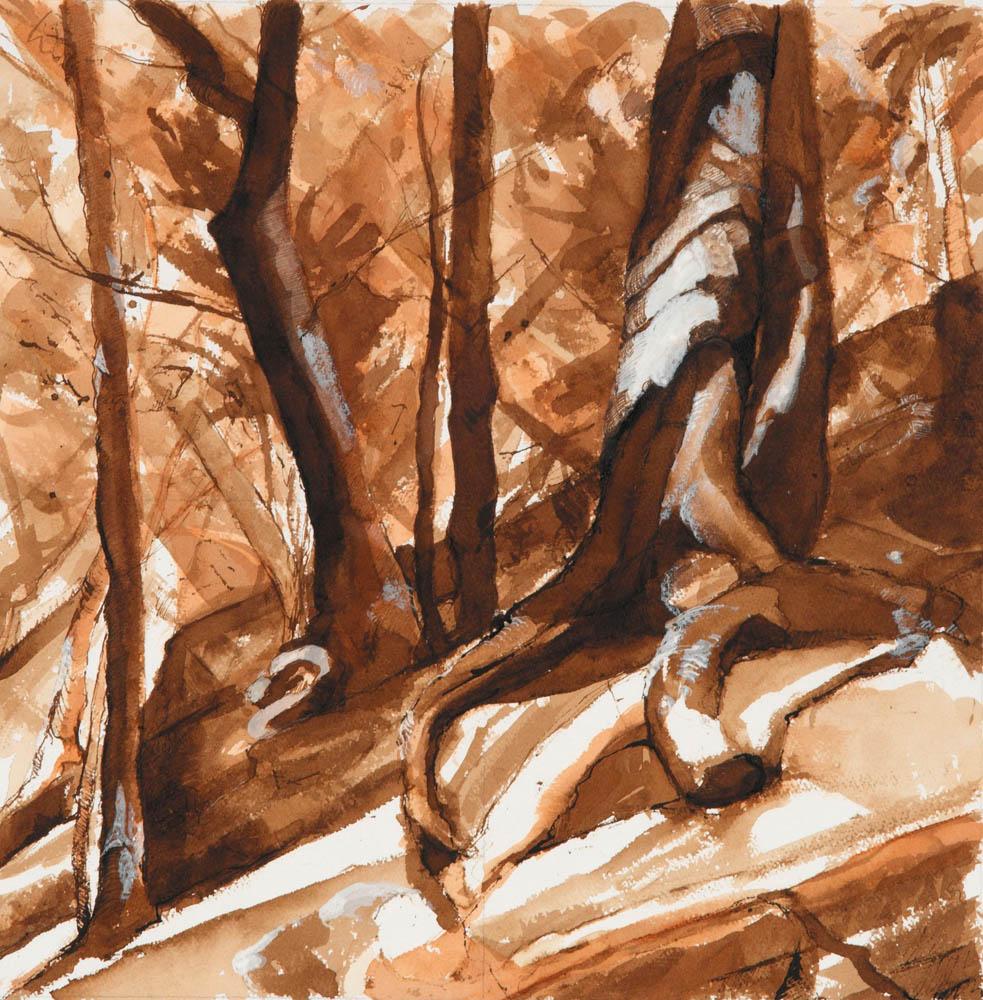 Woods Interior Study, #28