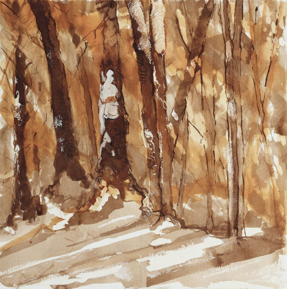 In the Woods, Study #19