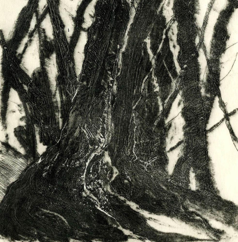 Woods Interior, #2, Suite of 4 prints
