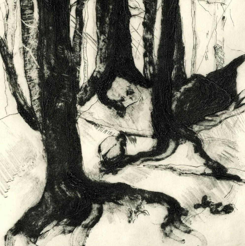 Woods Interior, #4, Suite of 4 prints