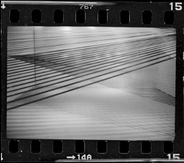 Leica077.jpg