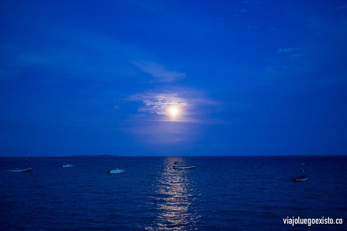 Veíamos estas increíbles vistas de la luna desde nuestro jardín