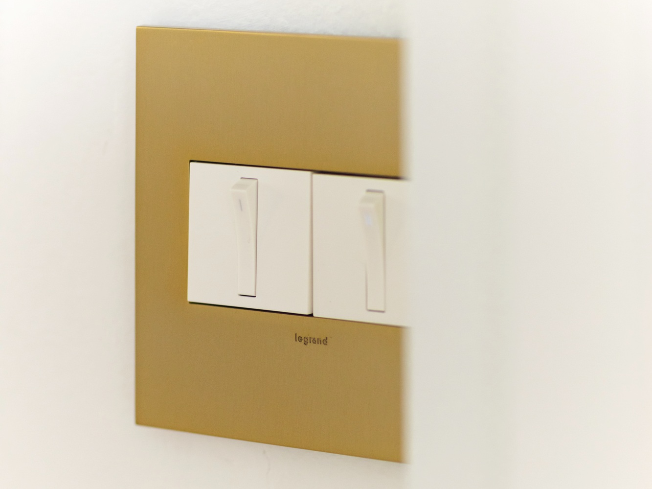 the adorne collection -  Switch + Dimmer  with  Brass Wall Plate