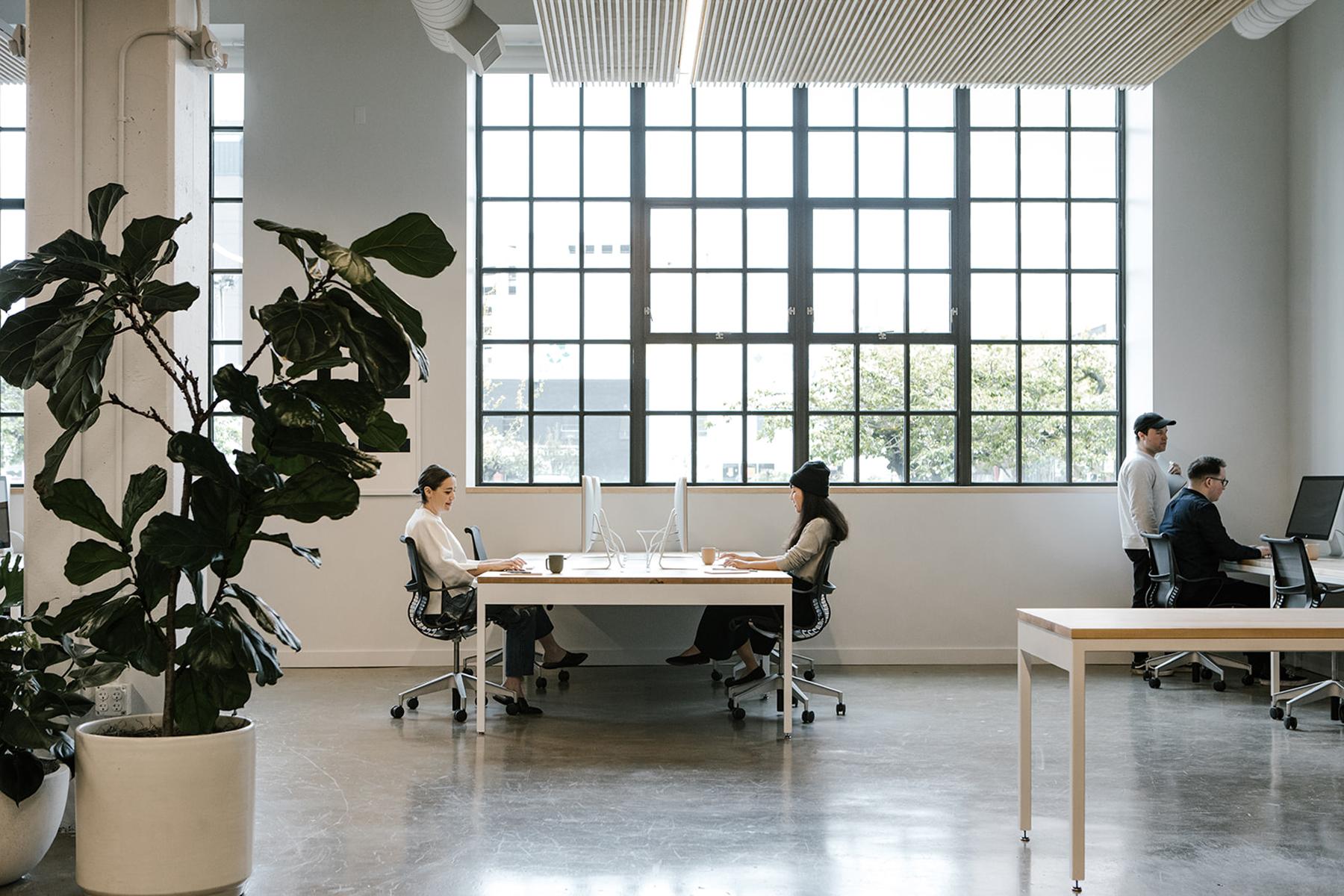 Casework_Work & Co_Open Office_04.jpg