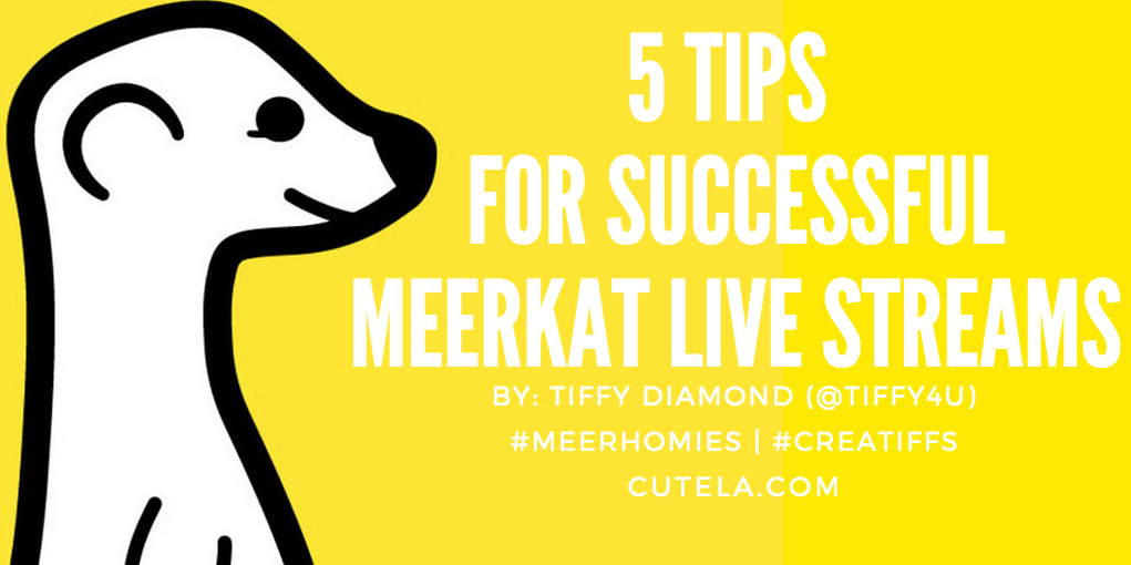5 Tips for  Successful Meerkat Live Stream