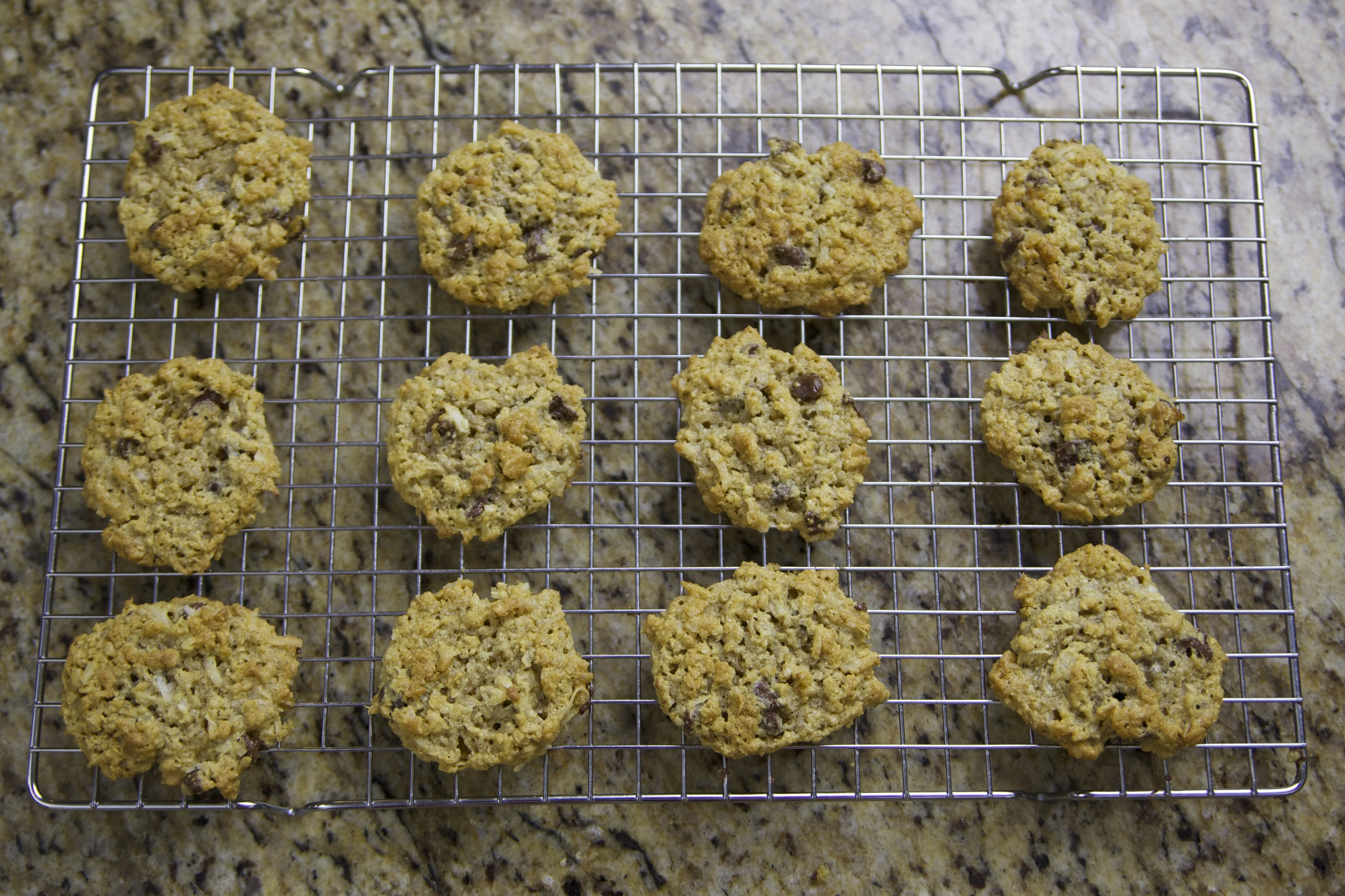 oatmeal chocolate chip coconut cookies