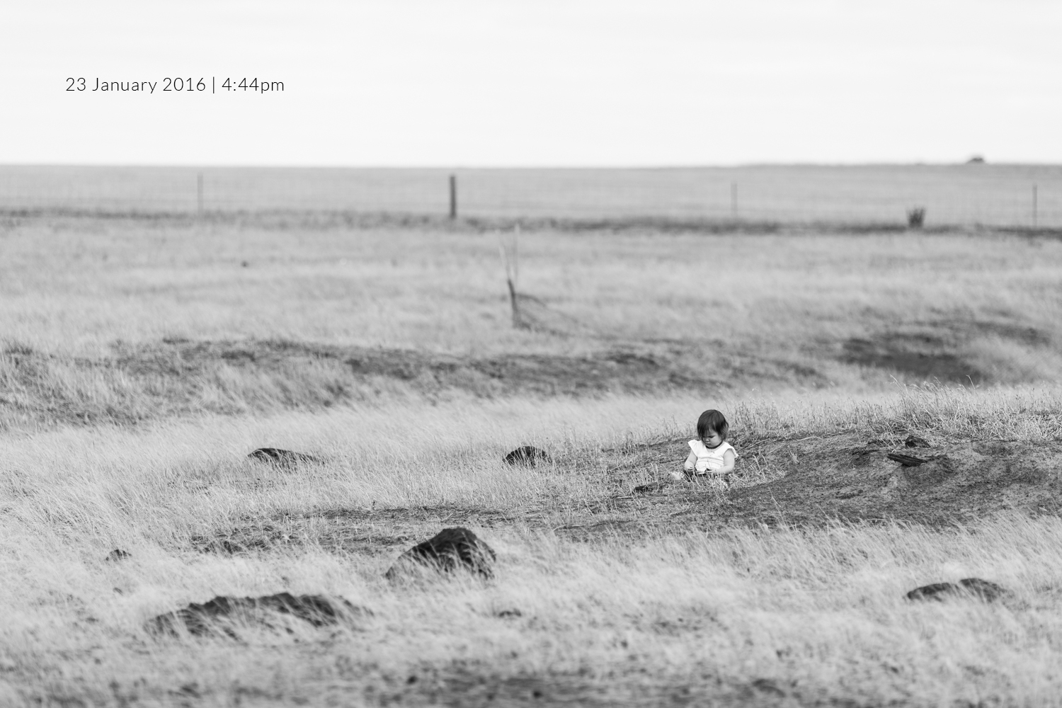 baby-in-field-baby-photography-photo-a-day-project-day-23.jpg