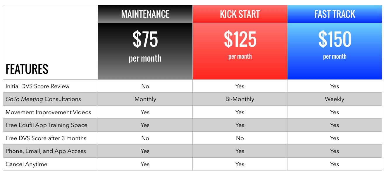 Consultation Pricing Table.png