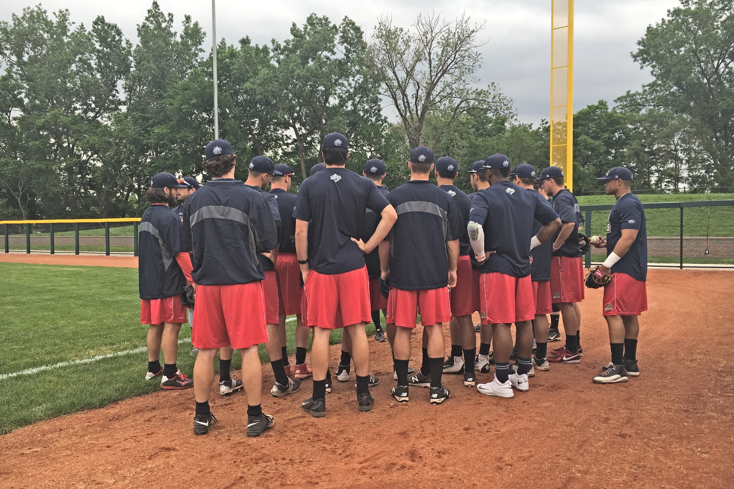 Team - ⚾️ Custom Throwing Distances for up to 10 players⚾️ Full access to Online Program⚾️ Updated Coach's Handbook