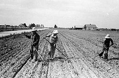 sharecroppers.jpg